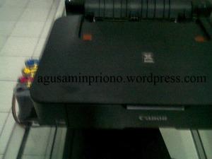 Foto0207 copy